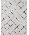 ISARA V3 Diamonda Silver Gray